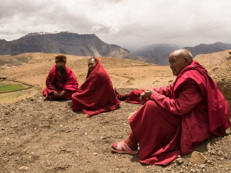 Lamas (Komic/ 4585m above sea level)
